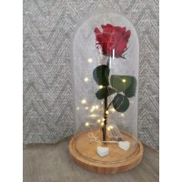 Cúpula con rosa liofilizada, cajita metálica corazón y luces