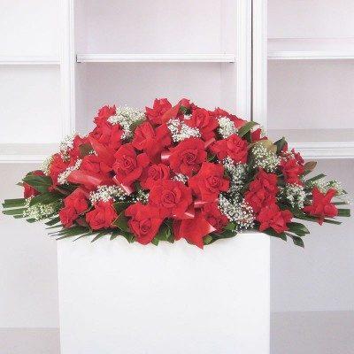 Coixí roses vermelles obertes