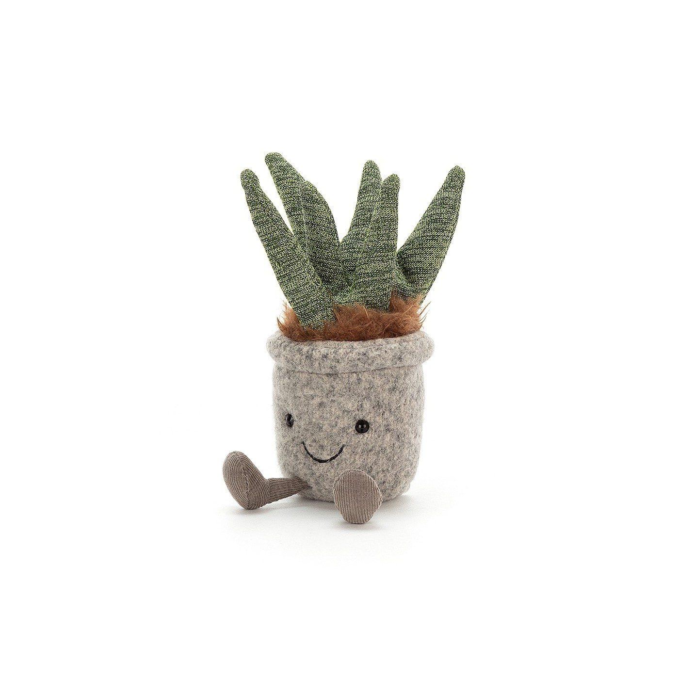 "Comprar Succulent Aloe ""peluche"" Barcelona"