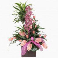 Centro espectacular de planta y flor con Dracaena