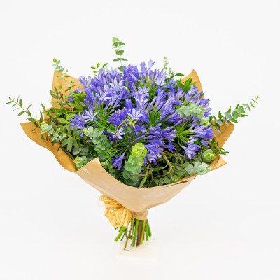 Bouquet of agapanthus