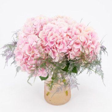Comprar Ramo 5 hortensias rosa pálido 50cm Barcelona