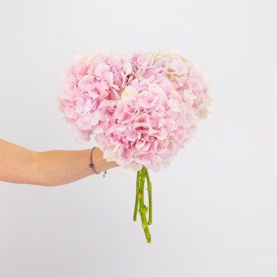 Comprar Hortensias rosas Barcelona