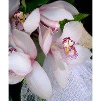 Vertical 3 nivells roses blanques